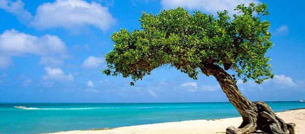 atrativos-turisticos-aruba
