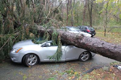 Protección del Carro en Caso de Huracán