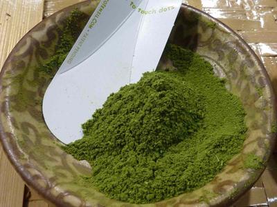 Moringa-Oleifera-2