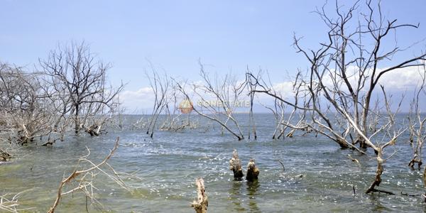 La Azufrada Lago Enriquillo 5