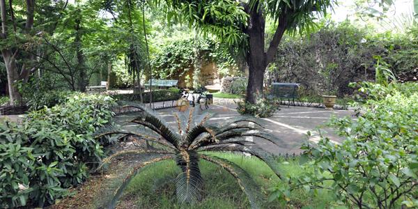 Quinta Dominica 3