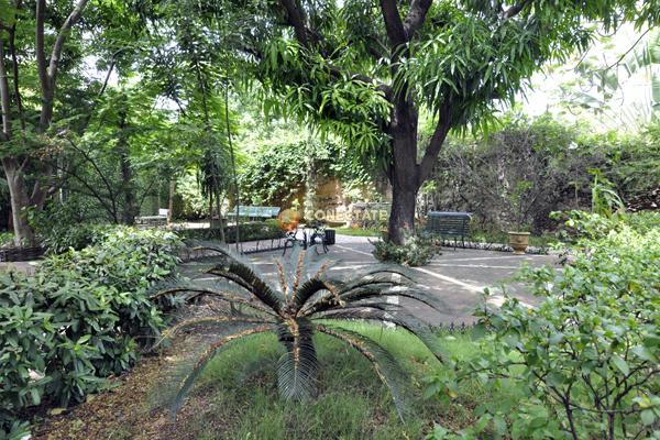Quinta Dominica 4