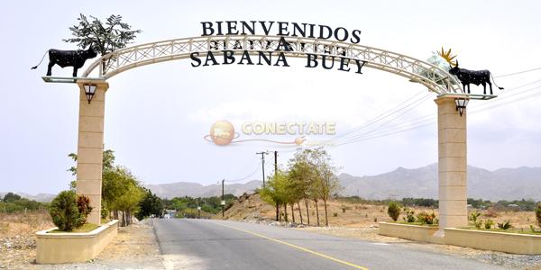 Sabana Buey